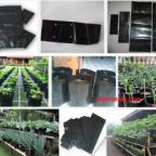 jual-polybag-tanaman-online-300x245-144x144