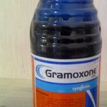 harga gramoxone