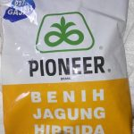 benih jagung pioneer 27