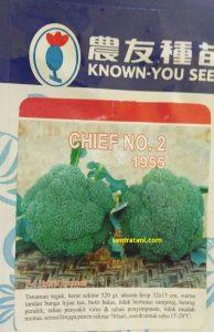 jual bibit brokoli chief