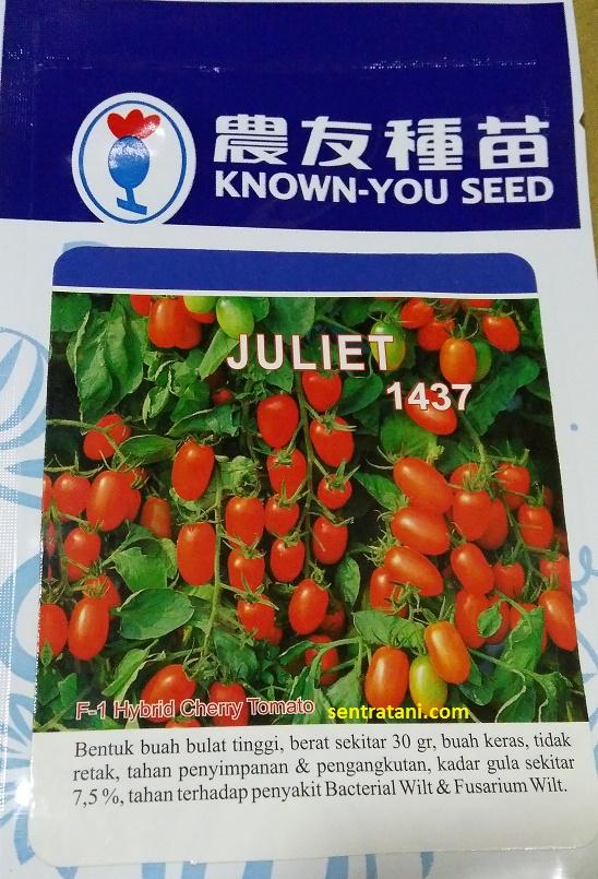 jual bibit tomat cherry