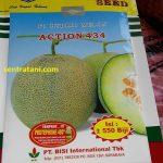 Benih Melon Action