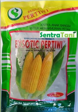 Benih Jagung Manis Exotic 250 Gram