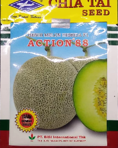 Benih Melon Action 88