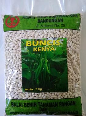Buncis Kenya 100 gr