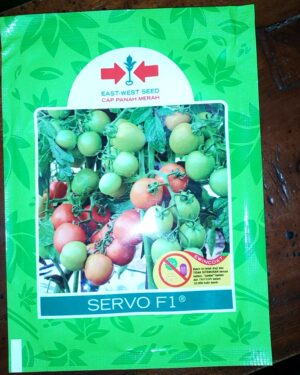 Tomat SERVO F1 1.750 S