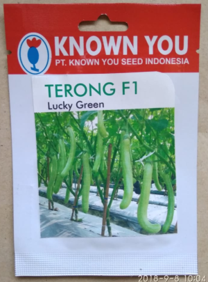 Terong Lucky Green