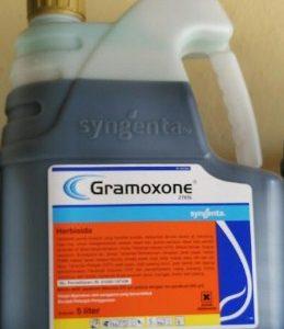 Herbisida Racun Rumput GRAMOXONE 5 Liter
