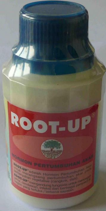 Hormon Perangsang Akar Root-Up 100gr