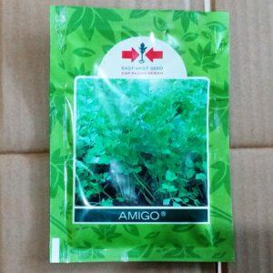 Seledri AMIGO 10.000s