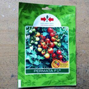 Tomat Permata F1 150s