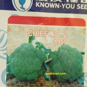 Brokoli Chief No. 2