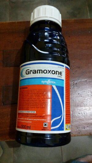 Herbisida Racun Rumput GRAMOXONE 1 Liter