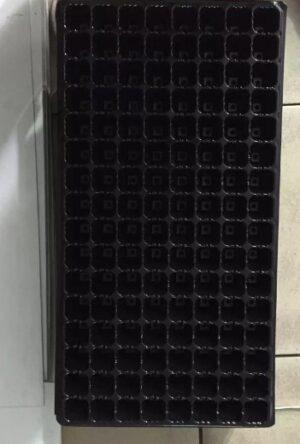 Tray Semai 128 Lubang