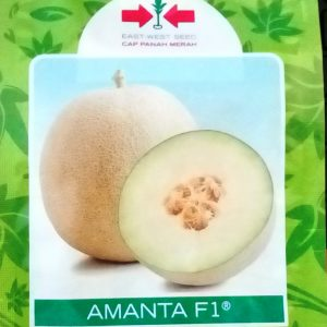 Melon Amanta F1 40s
