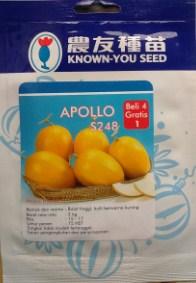 Melon Golden Apollo 500s
