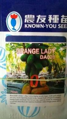 Pepaya Orange Lady 50s