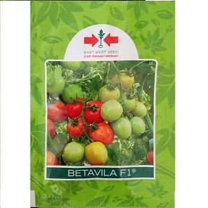 Benih Tomat Betavila F1 5 Gram