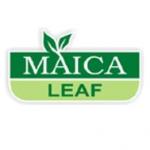 maica leaf logo brand