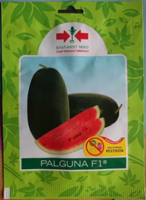 bibit semangka inul panah merah palguna
