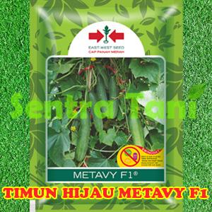 Benih Timun Hijau Metavy f1 800 Biji