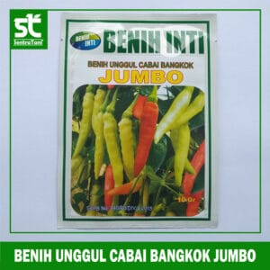 Benih Unggul Cabai Bangkok Jumbo