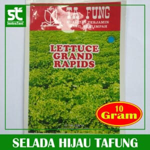 Selada Hijau Tafung 10 Gram