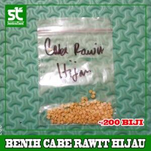 Benih Cabe Rawit Hijau